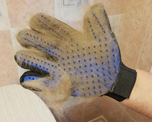 Luva remove pêlos photo review